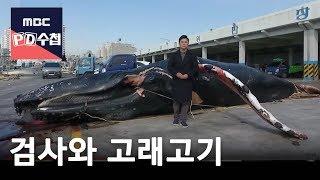 검사와 고래고기 [FULL] -prosecutor and whale meat-18/02/20-MBC PD수첩 1143회