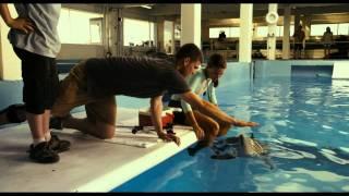 (story of one delfin)История дельфина. Русский трейлер '2011'. HD