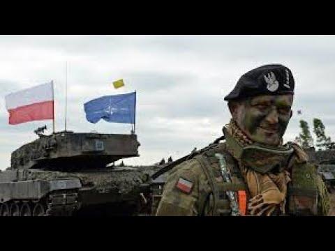 OTAN, Rússia, Europa Oriental e Brasil :as experiências de um Adido Militar.