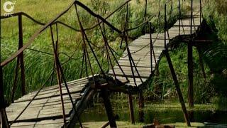 Причины и последствия таинственной гибели восьмилетнего мальчика из Чулымского района