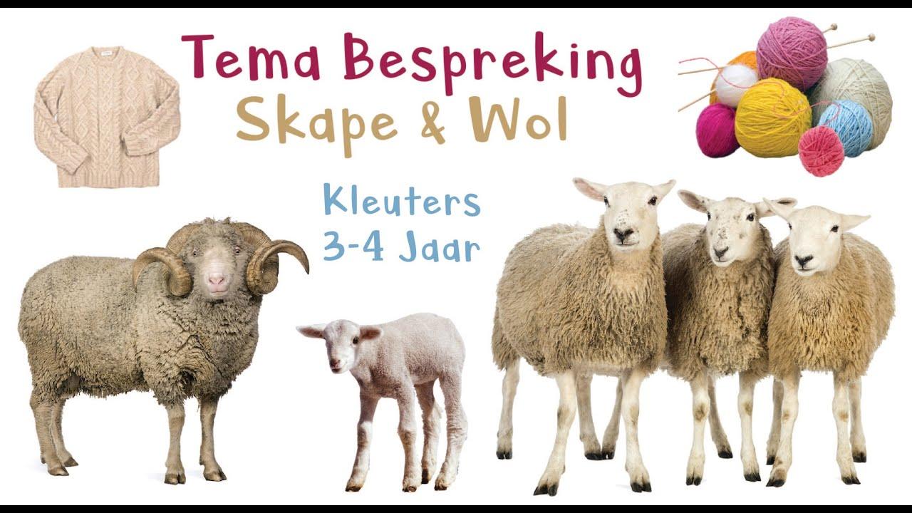 Download Skape - Tema Bespreking met Juffrou Leneé