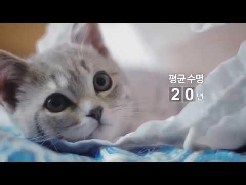 울산시(Ulsan) l 울산광역시 캠페인 환경보호 편
