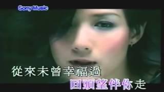 盧巧音&王力宏-好心分手