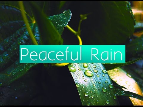 1 HOUR OF PEACEFUL RAIN MUSIC