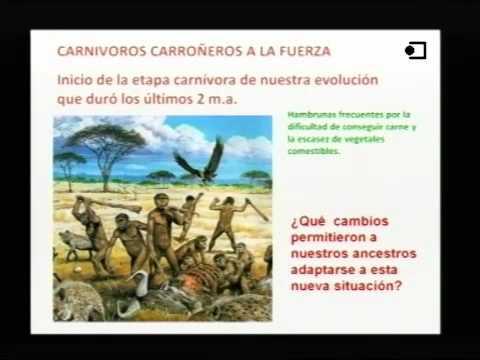 José Enrique Campillo - Alimentació i evolució humana: per què mengem el que mengem?
