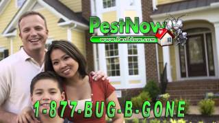 Pest Now 15 second commercial #2