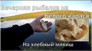 Ловля карася на хлебный мякиш