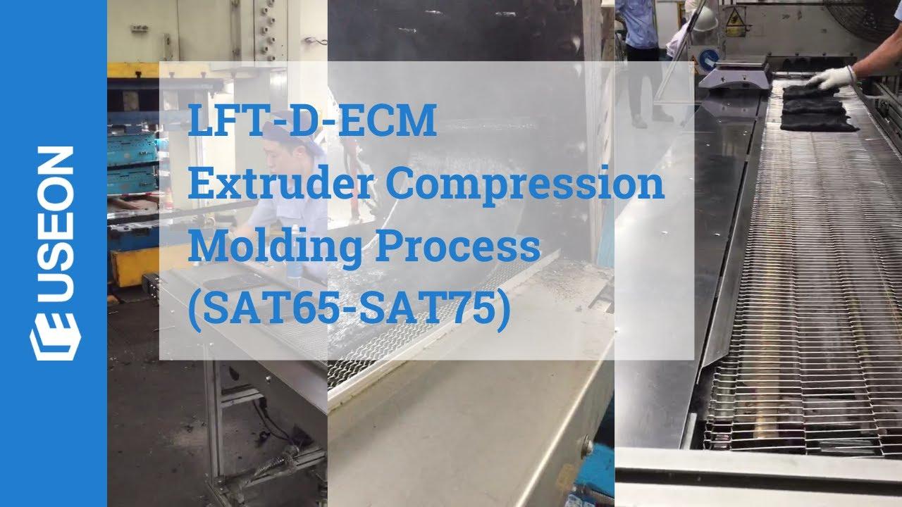 Lft D Ecm Extruder Compression Molding Process Useon Youtube