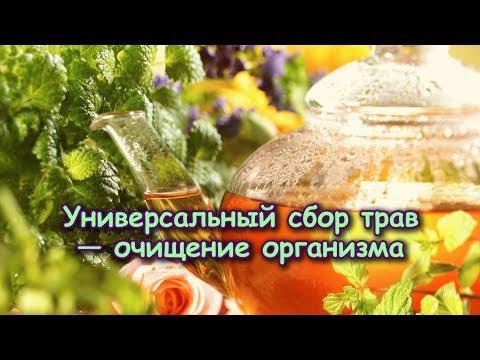УНИВЕРСАЛЬНЫЙ СБОР ТРАВ Оганян М.В. — ОЧИЩЕНИЕ ОРГАНИЗМА