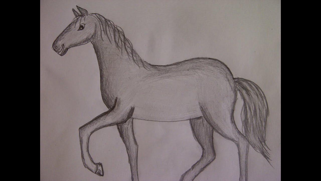 Нарисовать лошадь
