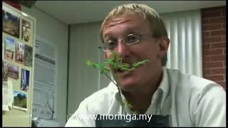 Moringa Oleifera Discovery Channel Documentary.
