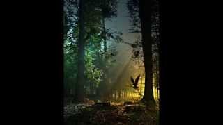 """Alexandre Desplat """"Tale of Tales"""""""