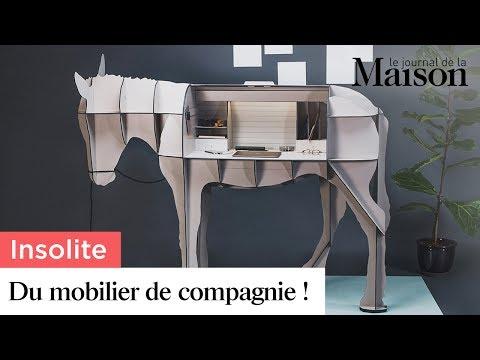 Déco Insolite : du mobilier de compagnie !