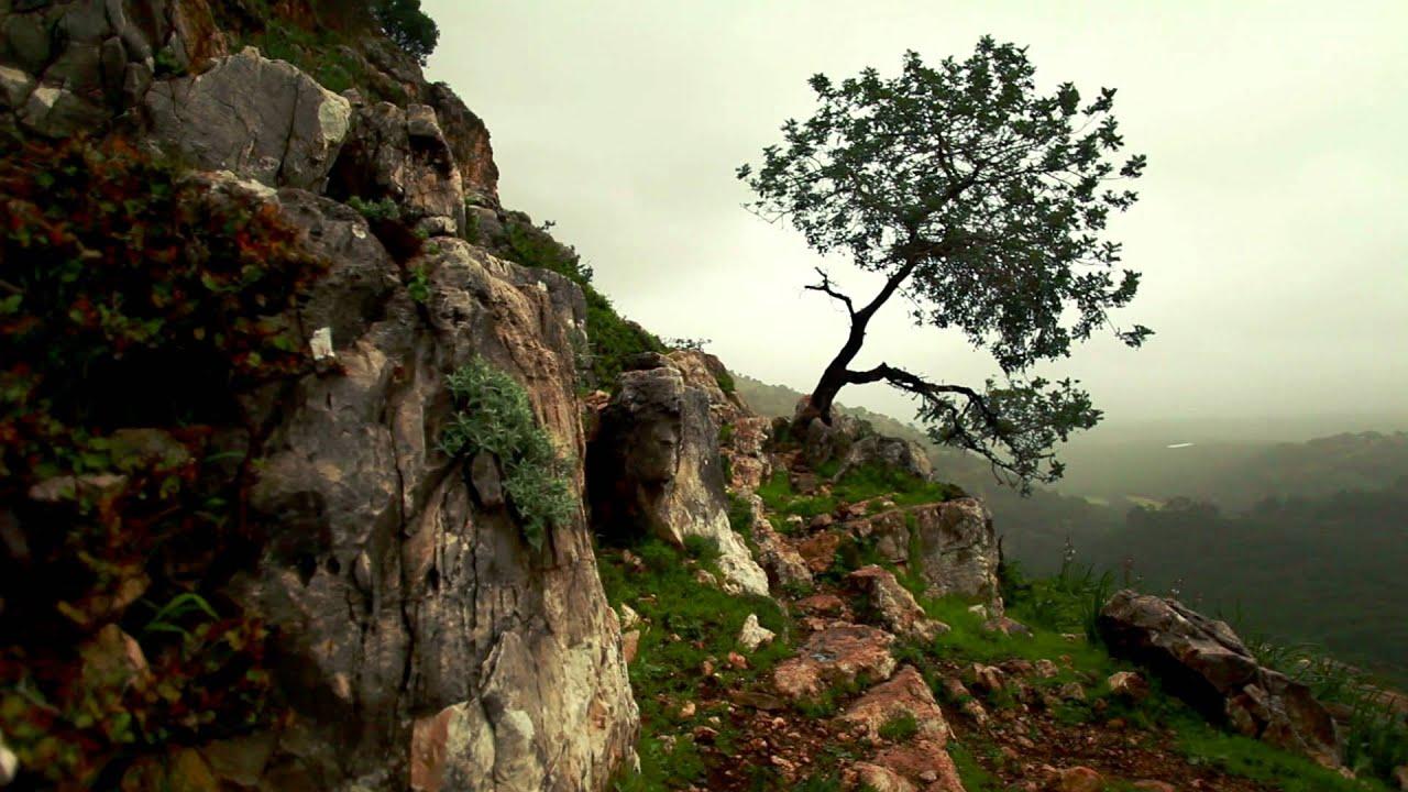 Little Plateau (Mount Jaar) Maxresdefault