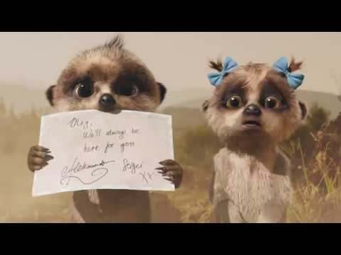 No Place To Call Home | 60'' | Compare The Market TV Ad | Compare The Meerkat