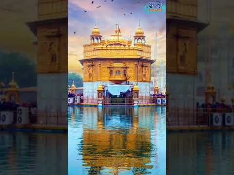 Dithe-Sabne-Thav-Sri-Harmandir-Sahib-Short-Clips-What-#39-S-App-Status