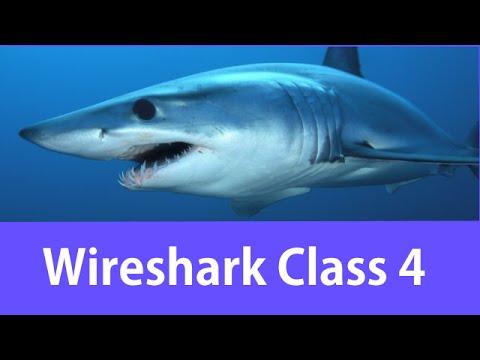 Wireshark Certified Network Analyst Class #4