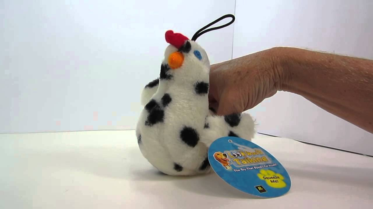 Multipet Look Who S Talking Chicken Dog Toy Youtube