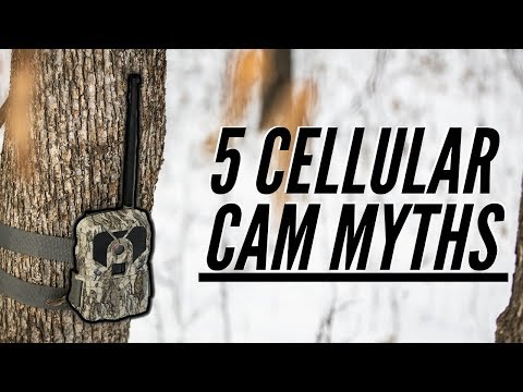 5 Cellular Trail Camera Myths You Need To Know!