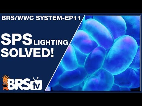 Ep11 - SPS reef tank lighting made simple and stable. - The BRS/WWC System | BRStv