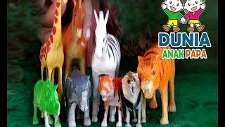 Video Anak Bermain Hewan-Hewanan | Mainan Anak