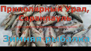 Зимняя рыбалка на приполярном урале Саранпауль