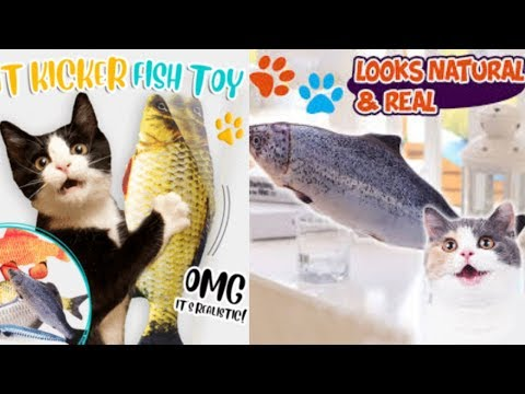 Cat Kicker Fish Toy Review 2020 - Does It Works ? catnip fish toy