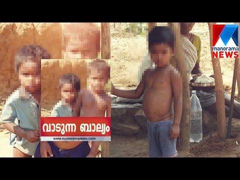 Tribal children on a high!   Manorama News