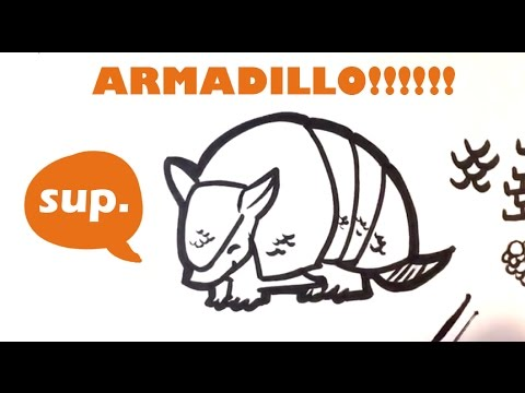 how to draw an armadillo # 11