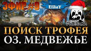 В поисках трофейного карпа 700 подписчиков Оз Медвежье Русская Рыбалка 4 ЭФИР 8