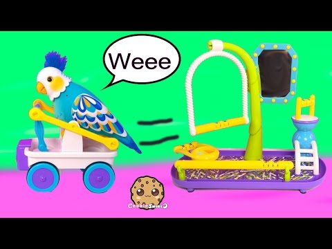 Little Live Pets CleverKeet Interactive Talking Dancing Cart Car Driving Bird Cookieswirlc Toy Video