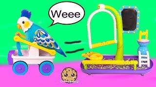 Little Live Pets CleverKeet Interactive Talking Dancing Cart Car Driving Bird Cookieswirlc Toy Video