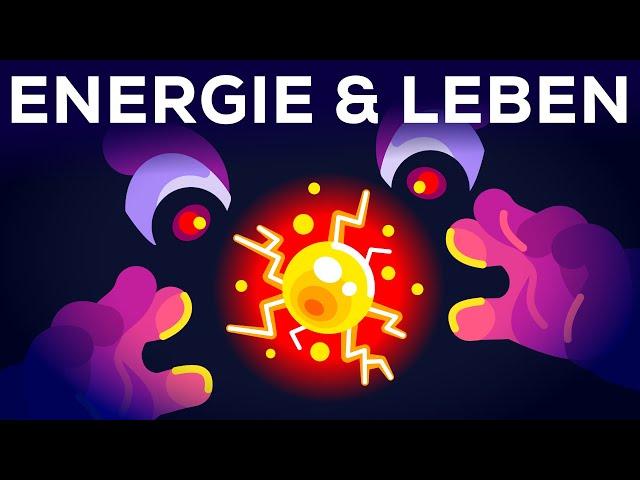 Warum lebst du? - Energie & Entropie