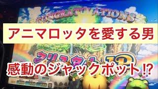 【メダルゲーム】アニマロッタ ジャックポット当てるまでの道のり2/2