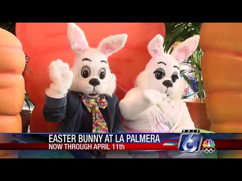 Easter Bunny Will Be At La Palmera Mall Through April 11