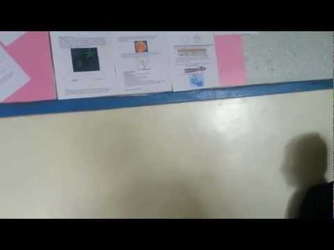 Oshwal Academy Nairobi-Junior High students in a biology lesson