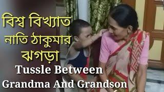Tussle between a grandmother and grandson ! বিশ্ব বিখ্যাত ঠাকুমা নাতির ঝগড়া! Kids fun! Cartoon !