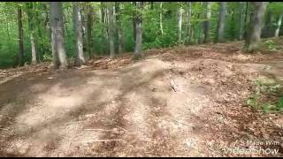 Zabawa skoki w lesie#2