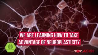 Neuroplasticity Rehabilitation