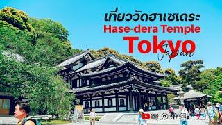 เที่ยวญี่ปุ่นด้วยตัวเอง EP2 : วัดฮาเซเดระ - ศาลเจ้าทสึรุงะโอกะฮาจิมังงุ