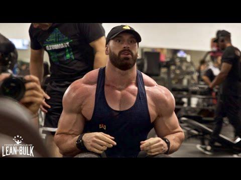 DAY 22 | LEAN BULK: SHOULDERS & ARMS