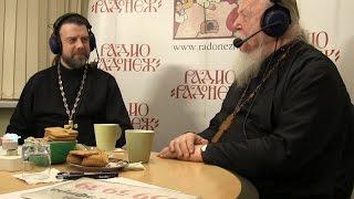 Радио «Радонеж». Протоиерей Димитрий Смирнов. Видеозапись прямого эфира от 2015.02.07
