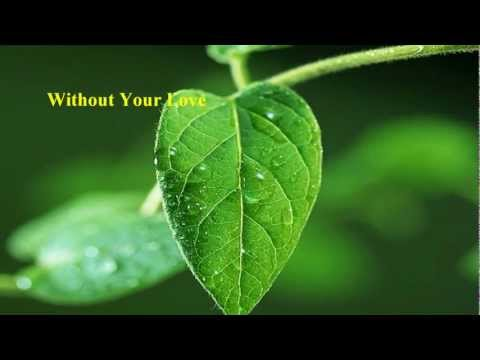 Roger Daltrey  Without Your Love w lyrics