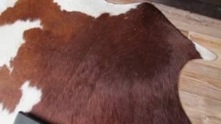 Обзор пылесоса BOSCH Easy Vac 12 работа со стандартной щеткой на ковровом покрытии