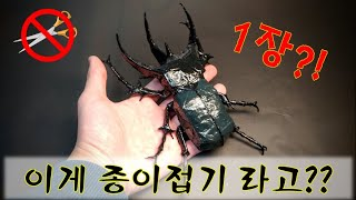 코카서스 장수풍뎅이 종이접기!!/Origami Chal…