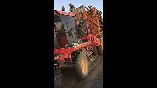 BARİGELLİ 3 Sıralı Pancar Sökme Makinesi