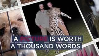 منظمة حقوقية: ترامب يشكل تهديدا على الحيوانات بأمريكا