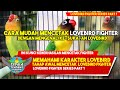 Tips Mudah Mencetak Lovebird Fighter Dari Bahan Lovebird Fighter Series Part   Mp3 - Mp4 Download