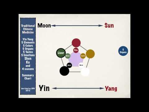 中醫基本理論BASIC Theory of Traditional Chinese Medicine
