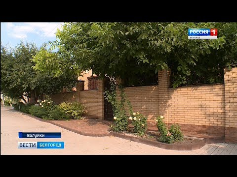 ГТРК Белгород - В Валуйках убили семью бизнесмена